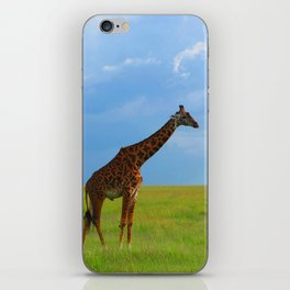 Lone giraffe iPhone Skin