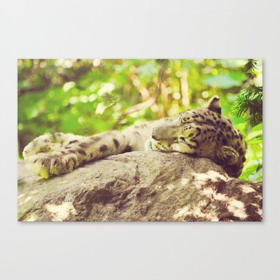Sleepy Snow Leopard  Canvas Print
