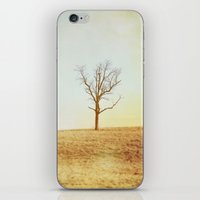 lonely iPhone & iPod Skins featuring lonely by cassandrapenceostermeier
