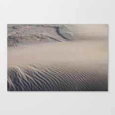 Sandy Canvas Print