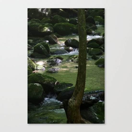 Another World 2 Canvas Print