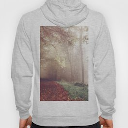 LOST IN THE PATH Hoody