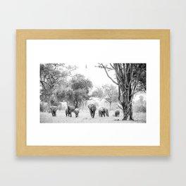 Luangwa Family Framed Art Print