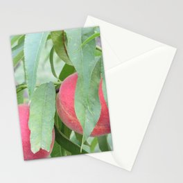 Dangling Fruit Stationery Cards
