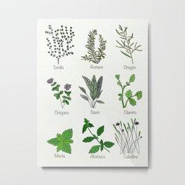 Hierbas de Cocina - kitchen herbs Metal Print