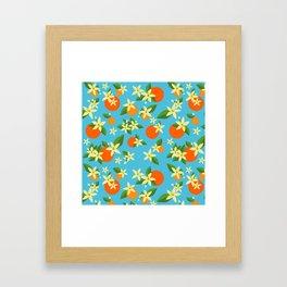 Orange Blossom Daydreams Framed Art Print