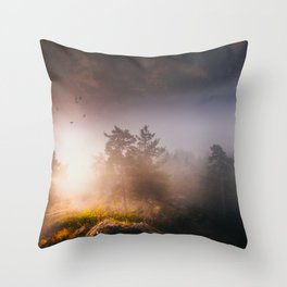 Cleansing Throw Pillow