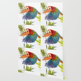 Colorful macaw flying Wallpaper