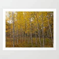 Autumn in Cheboygan, MI Art Print