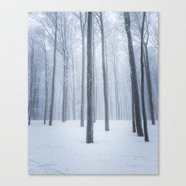 Foggy frozen winter forest Canvas Print