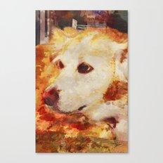 Bree Canvas Print
