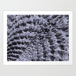 Ice Fields of Antarctica Art Print