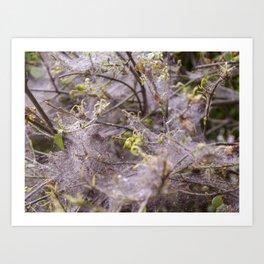 Network of nature Art Print