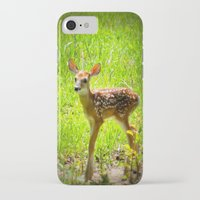 fawn iPhone & iPod Cases featuring FAWN by 2sweet4words Designs