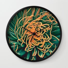 Green & orange succulent Wall Clock