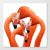 flamingos Canvas Prints featuring Flamingos by Regan's World