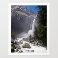 Mists of Nature Art Print