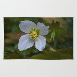 Floral Print 096 Rug