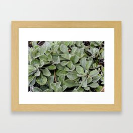 Green. Framed Art Print