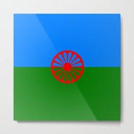 Flag of romani people Metal Print