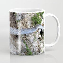 Dome Skull Coffee Mug