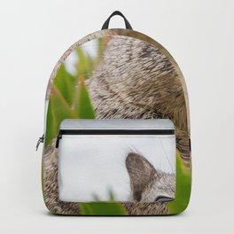 Surprised Sweet Animal Backpack