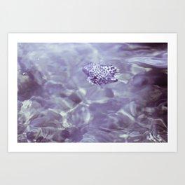 Blowfish Rescue Art Print