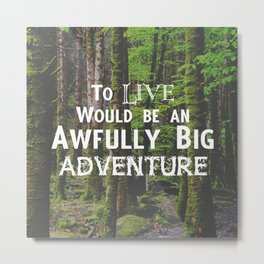 Peter Pan and Forrest Lands Metal Print