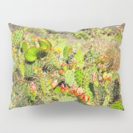green cactus with red and yellow flower texture background Pillow Sham