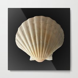 Come Out Your Shell Metal Print