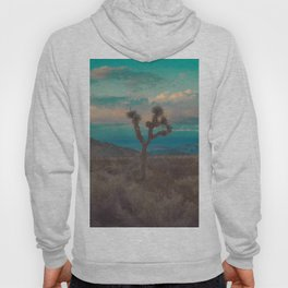 Joshua Tree Aqua Sunset Hoody