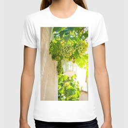 Bunch of grapes with green leaves in daylight T-shirt