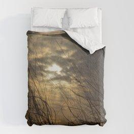 Brisk Comforters