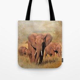 Family Walk Tote Bag