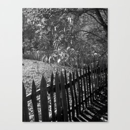 The Fenceline Canvas Print