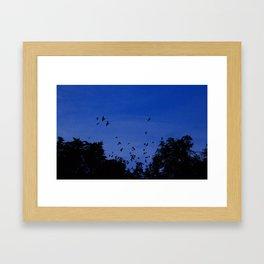 Night flight of the birds in the forest Framed Art Print