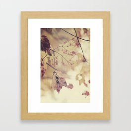 Fall Leaves 1 Framed Art Print
