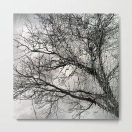 rainy daze Metal Print