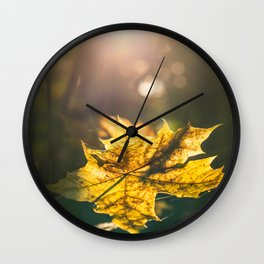 Autumn leaf in sunset Wall Clock