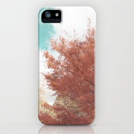 Beautiful Day in Autumn iPhone Case