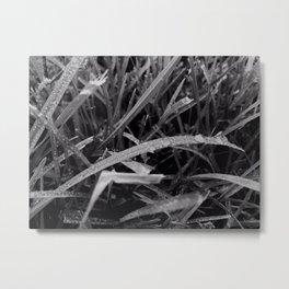 Grass aftermath Metal Print