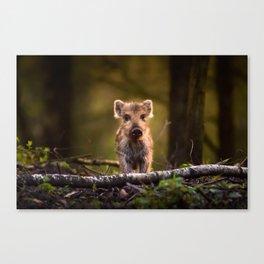 The little cute Canvas Print