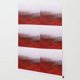 Red Land Wallpaper