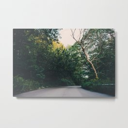 Journey through a forest road Metal Print