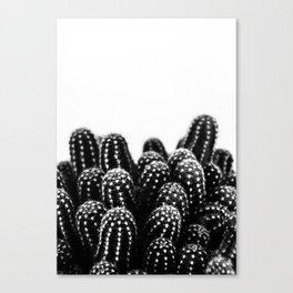 Cactus NATURE XII Canvas Print