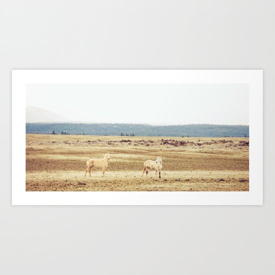 Two Oregon Horses Art Print