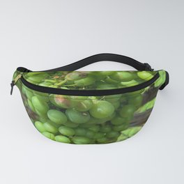 Winery Vineyard Grapes 2 Fanny Pack