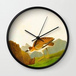 Rocky Mountain Plover Bird Wall Clock