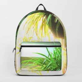 Morning window Backpack