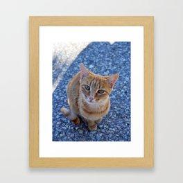 give me a little love Framed Art Print